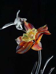 Sunburst Daffodil by Ronnie Hughes