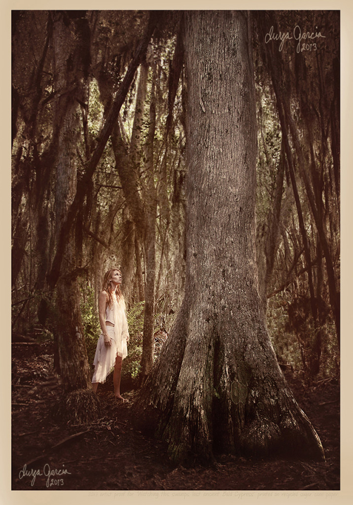 """Last Cypress Tree"" by Durga Garcia"