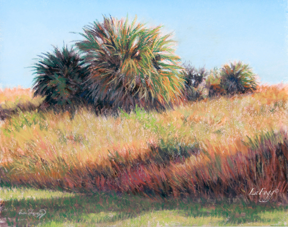"""Palmettos in Warm Light"""