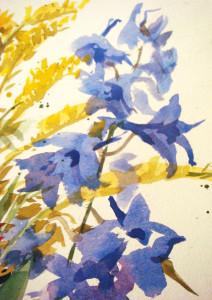 """Larkspur"" by Anita Lovitt"