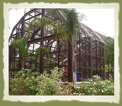 Three-Story Chimp Habitat