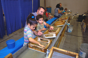 Gem, Mineral and Fossil Hunters from 2013 Event