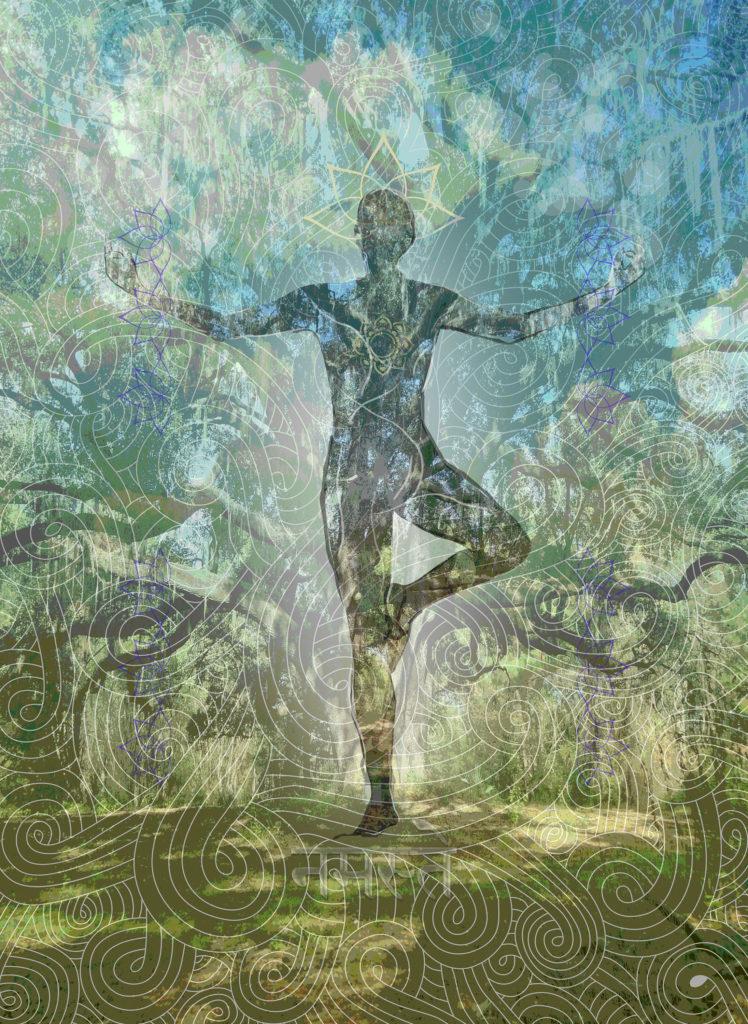 hackman-ancient-oak-tree-pose-bl-3000